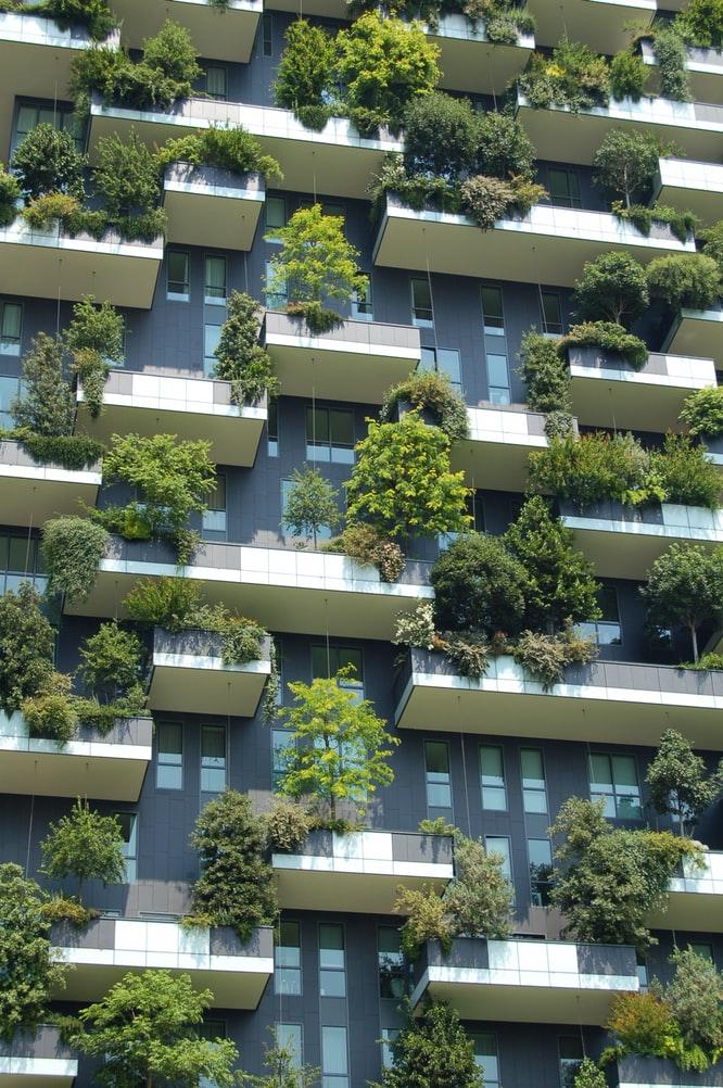 groen-balkon-planten