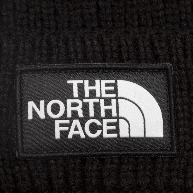 then-north-face-logo