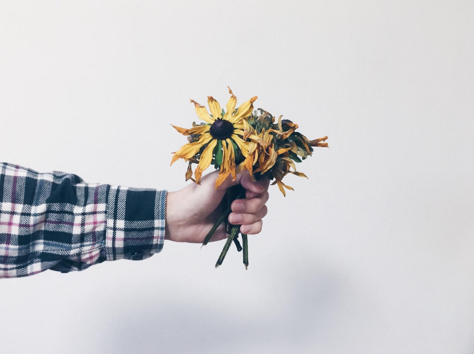 bosje-bloemen