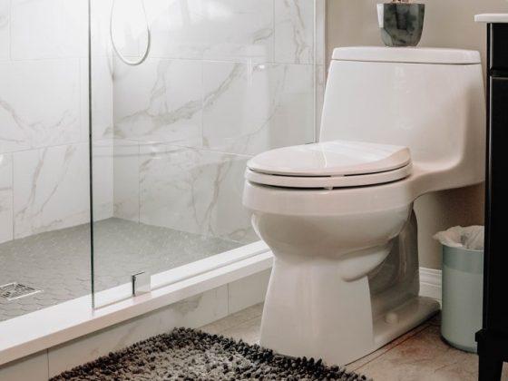 wit-toilet